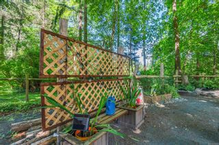 Photo 58: 4498 Colwin Rd in : CR Campbell River South House for sale (Campbell River)  : MLS®# 879358