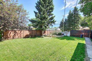 Photo 47: 10933 150 Street in Edmonton: Zone 21 House for sale : MLS®# E4251858