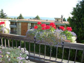 """Photo 9: 304 1048 KING ALBERT Avenue in Coquitlam: Central Coquitlam Condo for sale in """"BLUE MOUNTAIN MANOR"""" : MLS®# V914288"""