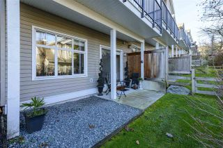 "Photo 34: 32 11282 COTTONWOOD Drive in Maple Ridge: Cottonwood MR Townhouse for sale in ""The Meadows"" : MLS®# R2529323"