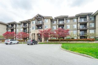 """Photo 1: 225 12258 224 Street in Maple Ridge: East Central Condo for sale in """"Stonegate"""" : MLS®# R2572732"""