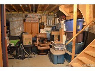 Photo 20: 223 Carter Crescent in Saskatoon: Confederation Park Single Family Dwelling for sale (Saskatoon Area 05)  : MLS®# 479643