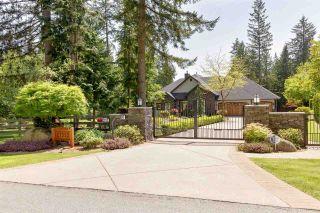 Photo 7: 27552 128 Avenue in Maple Ridge: Northeast House for sale : MLS®# R2587492