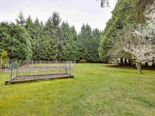 Photo 28: 3310 144 Street in Surrey: Elgin Chantrell House for sale (South Surrey White Rock)  : MLS®# R2558914
