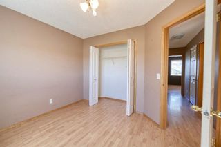 Photo 32: 172 ERIN MEADOW Way SE in Calgary: Erin Woods Detached for sale : MLS®# A1028932