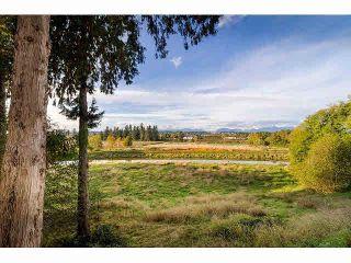 Photo 17: 206 15195 36 Avenue in Surrey: Morgan Creek Condo for sale (South Surrey White Rock)  : MLS®# F1424522