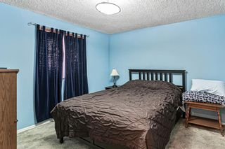 Photo 5: 8304 43 Avenue NW in Calgary: Bowness Detached for sale : MLS®# A1093020
