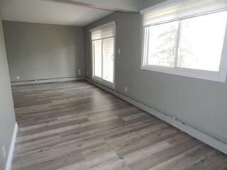 Photo 19:  in Edmonton: Zone 29 Condo for sale : MLS®# E4248069