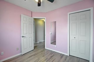 Photo 23: 102 Martin Crossing Grove NE in Calgary: Martindale Detached for sale : MLS®# A1130397
