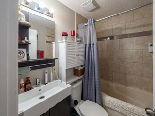 Photo 32: 237 Shawfield Road SW in Calgary: Shawnessy Detached for sale : MLS®# A1069121