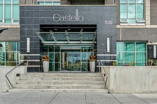 Main Photo: 406 530 12 Avenue SW in Calgary: Beltline Apartment for sale : MLS®# A1154446