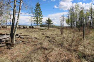 Photo 9: 57032 RR 50: Rural Lac Ste. Anne County Rural Land/Vacant Lot for sale : MLS®# E4244016