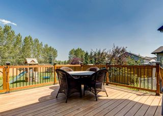 Photo 48: 176 Hawkmere Way: Chestermere Detached for sale : MLS®# A1129210