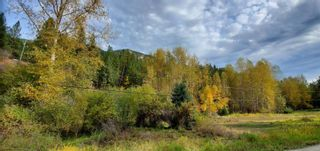 Photo 7: 789 Shuswap River Drive, in Lumby: House for sale : MLS®# 10240114