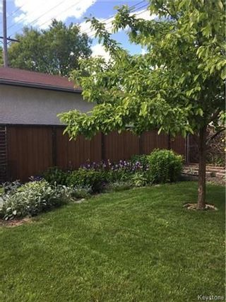 Photo 20: 297 Knowles Avenue in Winnipeg: North Kildonan Residential for sale (3G)  : MLS®# 1809527