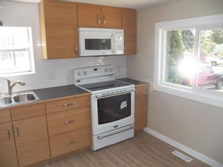 Photo 12: 257 LEE_RIDGE Road NW in Edmonton: Zone 29 House for sale : MLS®# E4248957