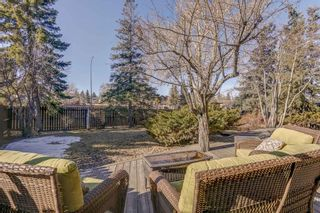 Photo 42: 87 Bermuda Close NW in Calgary: Beddington Heights Detached for sale : MLS®# A1073222