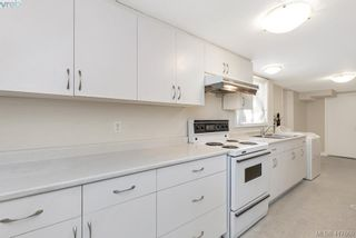 Photo 26: 3630 Kathleen St in VICTORIA: SE Maplewood House for sale (Saanich East)  : MLS®# 828620