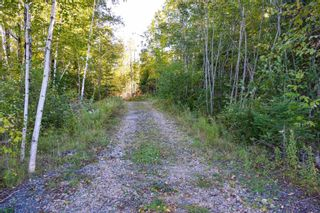 Photo 12: Lot 148 3619 Forties Road in Franey Corner: 405-Lunenburg County Residential for sale (South Shore)  : MLS®# 202125303