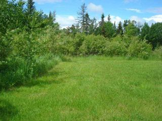 Photo 3: 41 Heron Point Cl: Rural Wetaskiwin County Rural Land/Vacant Lot for sale : MLS®# E4233949