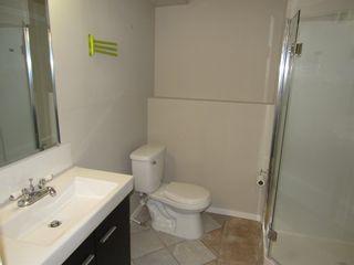 Photo 30: 3613 42A Avenue in Edmonton: Zone 29 House for sale : MLS®# E4253815