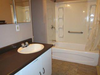 Photo 7: 864 Spruce Street in WINNIPEG: West End / Wolseley Residential for sale (West Winnipeg)  : MLS®# 1222336