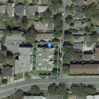 Photo 25: 207 2710 Grosvenor Rd in VICTORIA: Vi Oaklands Condo for sale (Victoria)  : MLS®# 801865