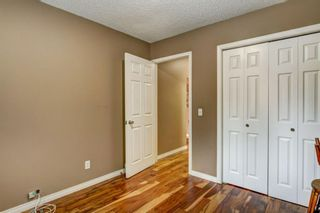 Photo 13: 184 Mountain Circle SE: Airdrie Detached for sale : MLS®# A1137347