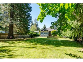 Photo 35: 11128 CALEDONIA Drive in Surrey: Bolivar Heights House for sale (North Surrey)  : MLS®# R2492410