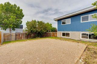 Photo 17: 2617 Dover Ridge Drive SE in Calgary: Dover Semi Detached for sale : MLS®# A1127715