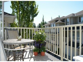 """Photo 13: 11 14952 58TH Avenue in Surrey: Sullivan Station Townhouse for sale in """"HIGHBRAE"""" : MLS®# F1318700"""