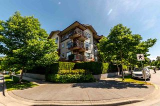 """Photo 1: 310 200 KLAHANIE Drive in Port Moody: Port Moody Centre Condo for sale in """"SALAL"""" : MLS®# R2174958"""