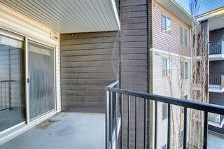 Photo 19: 318 355 Taralake Way NE in Calgary: Taradale Apartment for sale : MLS®# A1060630