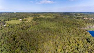 Photo 4: Lower Branch Lots in Lower Branch: 405-Lunenburg County Vacant Land for sale (South Shore)  : MLS®# 202115974