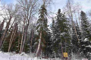 """Photo 16: 3 3000 DAHLIE Road in Smithers: Smithers - Rural Land for sale in """"Mountain Gateway Estates"""" (Smithers And Area (Zone 54))  : MLS®# R2280165"""
