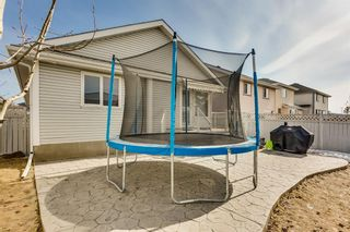Photo 20: 521 Coral Keys Villas NE in Calgary: Coral Springs Detached for sale : MLS®# A1088312