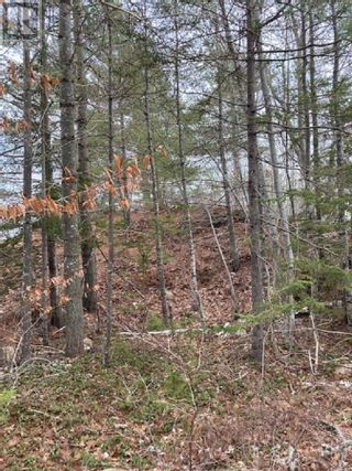 Photo 5: Lot GR 4 Old Mill Road in Pleasantville: Vacant Land for sale : MLS®# 202100614
