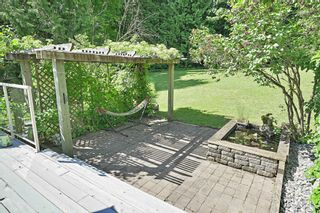 """Photo 66: 26177 126 Avenue in Maple Ridge: Websters Corners House for sale in """"Whispering Falls"""" : MLS®# R2459446"""
