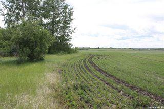 Photo 6: Karoly Farm in Saskatoon: Farm for sale : MLS®# SK813565