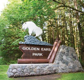 "Photo 5: 407 22265 DEWDNEY TRUNK Road in Maple Ridge: West Central Condo for sale in ""ERA"" : MLS®# R2605152"