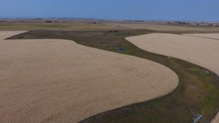 Photo 12: : Rural Foothills M.D. Land for sale : MLS®# C4137604