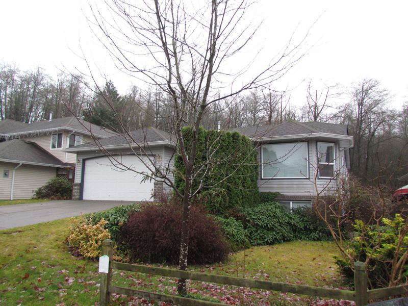 Photo 22: Photos: 30936 Brookdale Crt. in Abbotsford: Abbotsford West House for rent