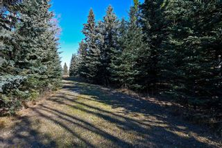 Photo 26: 20.02 Acres +/- NW of Cochrane in Rural Rocky View County: Rural Rocky View MD Land for sale : MLS®# A1065950