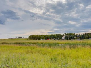 Photo 10: 14ac NORTH of DUNBOW Rd 48 Street: Rural Foothills County Residential Land for sale : MLS®# A1092764