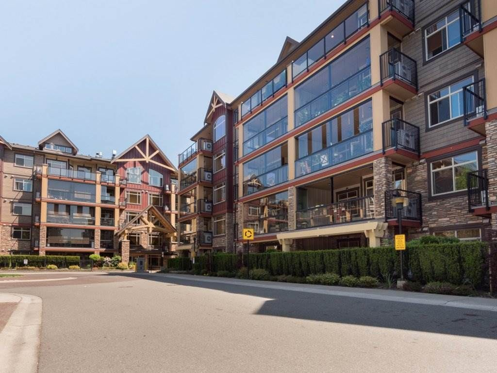 """Main Photo: 527 8288 207A Street in Langley: Willoughby Heights Condo for sale in """"Yorkson Creek"""" : MLS®# R2270868"""