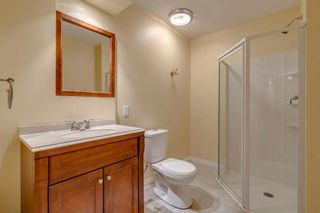 Photo 40: 1571 COPPERFIELD Boulevard SE in Calgary: Copperfield Detached for sale : MLS®# A1107569
