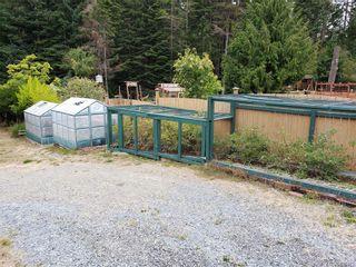 Photo 40: 6224 Llanilar Rd in : Sk East Sooke House for sale (Sooke)  : MLS®# 851492