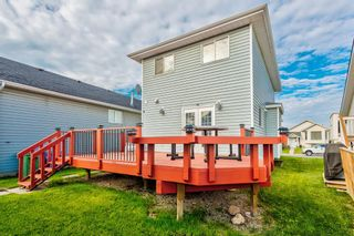 Photo 34: 18 Erin Meadow Close SE in Calgary: Erin Woods Detached for sale : MLS®# A1143099