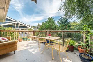 Photo 15: 229 Howe St in Victoria: Vi Fairfield East House for sale : MLS®# 844362
