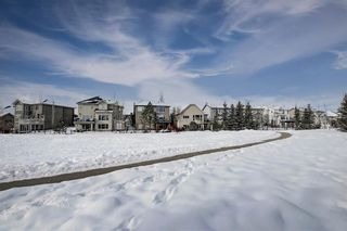 Photo 48: 27 Elgin Estates Hill SE in Calgary: McKenzie Towne Detached for sale : MLS®# A1071276